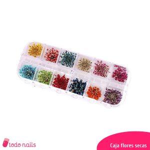 Caja-flores-secas