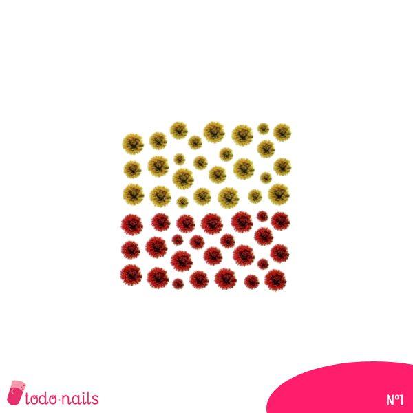 Pegatinas-flores-secas-n1